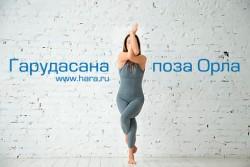 Асана Гарудасана – поза Орла в йоге